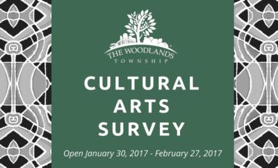 cultural arts survey 2017