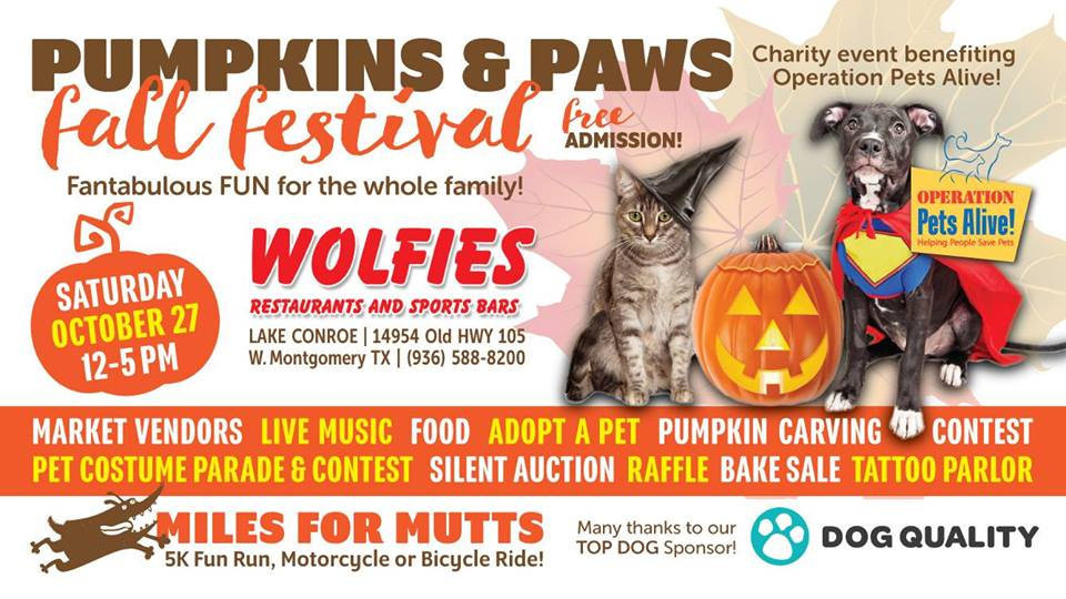 Pumpkins & Paws Fall Festival to benefit OPA