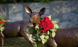 Local Florist spreads joy through public arrangements in The Woodlands