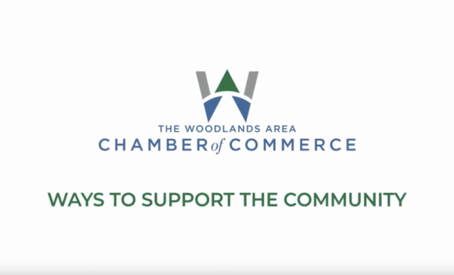 the woodlands chamber local business